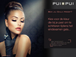 Minerale make-up van Pui Pui